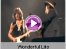 Zucchero - Wonderful Life