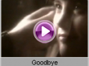 Savage - Goodbye